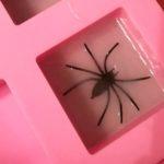 DIY Halloween Spinnen Seife