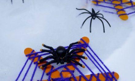 DIY Halloween Spinnennetz