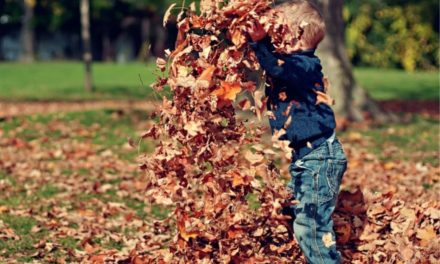 Tipps zur Stärkung der Immunabwehr von Kindern